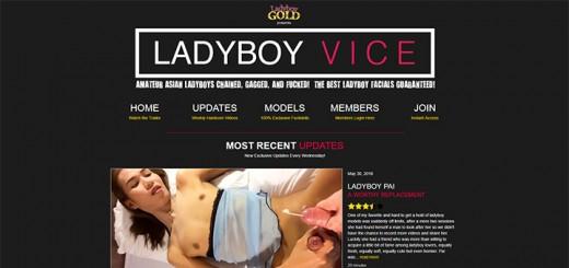 LadyboyVice